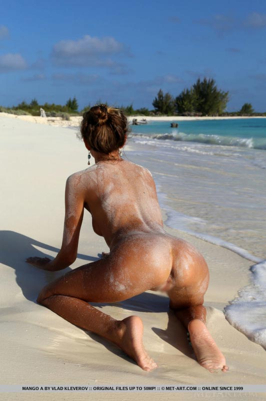 Thought Amateur nude chick on all fours